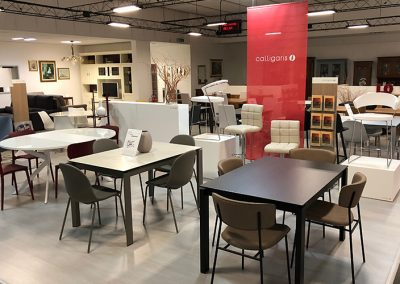 showroom montorsi arredamenti